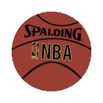 Spalding Z Indoor Outdoor Basketball